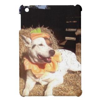 dog, dogs, fun, funny, Luna Says, Halloween, humor iPad Mini Covers