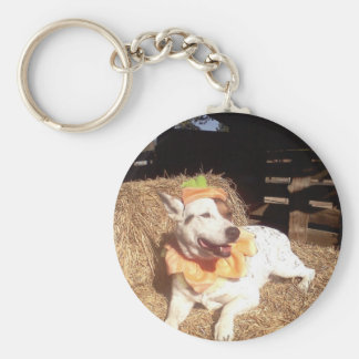 dog dogs fun funny Luna Says Halloween humor Key Chains