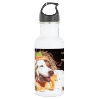 dog, dogs, fun, funny, Luna Says, Halloween, humor Water Bottle