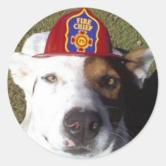 Dog, Dogs, Funny, Fun, Humor, humor, laugh, Luna s Classic Round Sticker