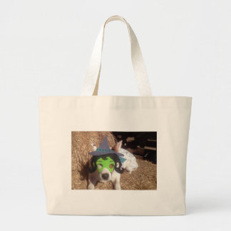 dog, dogs, Halloween, withch, fun, funny, Luna say Bags