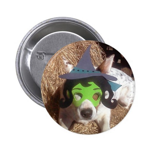 dog, dogs, Halloween, withch, fun, funny, Luna say Button