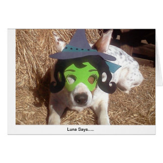 dog, dogs, Halloween, withch, fun, funny, Luna say Card