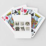 dog, dogs, pets, eric ginsburg,worldoferic.com, poker deck