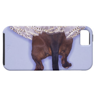 Dog dressed up iPhone 5 cover