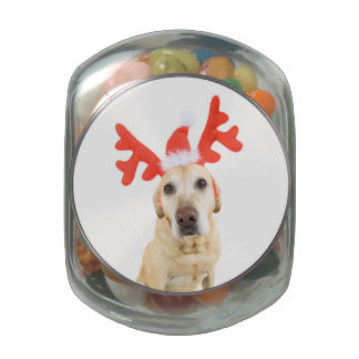Dog dressed up in reindeer antlers glass candy jar
