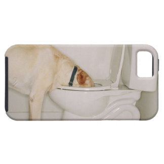 Dog Drinking out of Toilet iPhone SE/5/5s Case