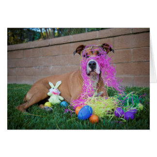 Dog Easter Card Greeting Card