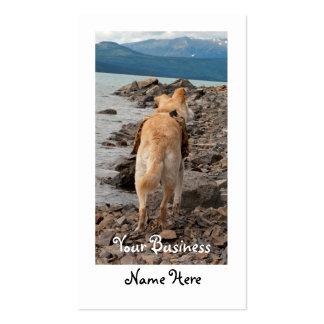Dog: Explorer Business Card