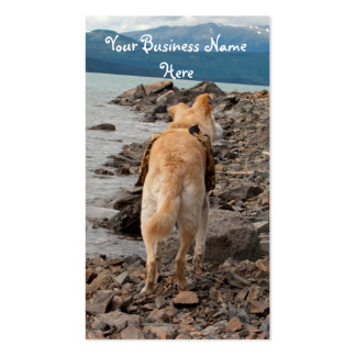 Dog: Explorer Double-Sided Standard Business Cards (Pack Of 100)