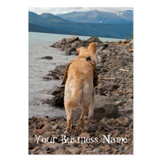 Dog: Explorer Large Business Card