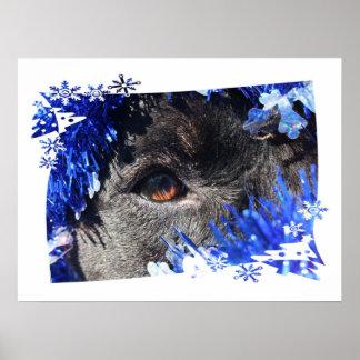 Dog eye Blue Tinsel christmas tree Frame Poster