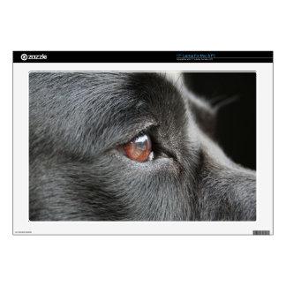 Dog Eye Close Up Laptop Skin