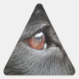 Dog Eye Close Up Triangle Sticker