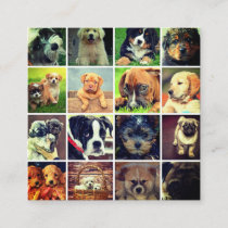 Dog Faces Collage Dog Walker Trainer And Sitter Square Business Card
