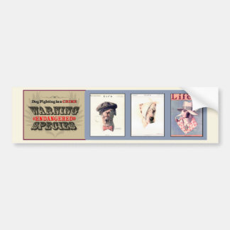 Dog Fighting is a Crime (v1) Bumper Sticker