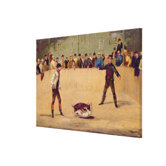 Dog Fighting (oil on paper) Canvas Print