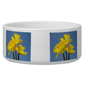 Dog Food Bowl Reward Me with Food! Daffodils