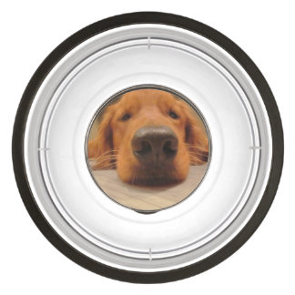 Dog Food Bowl Pet Bowl