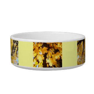 Dog Food Bowls Autumn Leaves Fall Trees custom