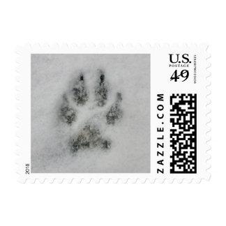 Dog Footprint in Snow postage stamp