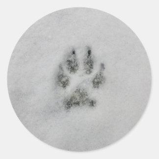 Dog Footprint in Snow sticker