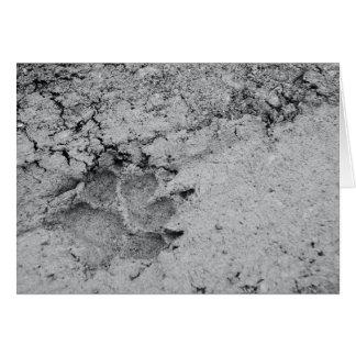 Dog Footprint on the Ground Card