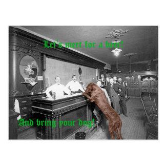 Dog Friendly Saloon Tavern Bar 1900 Photograph Postcard