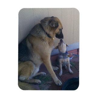 Dog Friends Premium Flexi Magnet