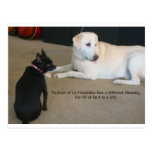 Dog Friendship Postcard