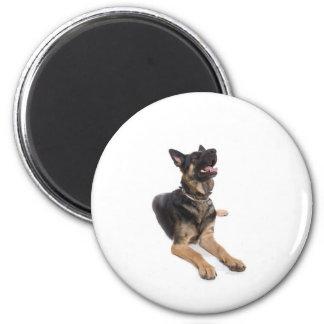 dog - german shepherd 2 inch round magnet