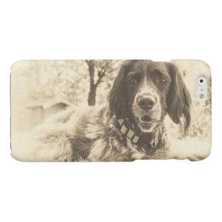 dog glossy iPhone 6 case