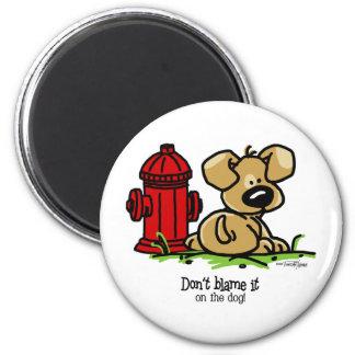 Dog Gone Fun Magnets