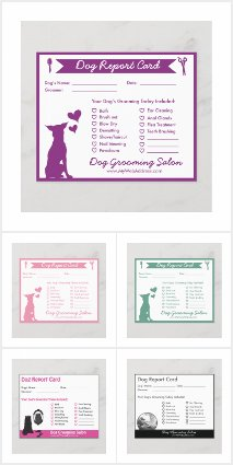 Dog Groomer Report Cards