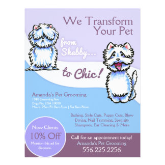 """Dog Groomer Shabby Chic Westie Coupon Ad 8.5"""" X 11"""" Flyer"""