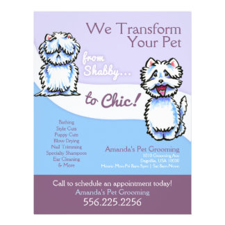 Dog Groomer Shabby Chic Westie Promotional Flyer