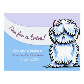Dog Groomer Shabby Westie Appointment Reminder Postcard
