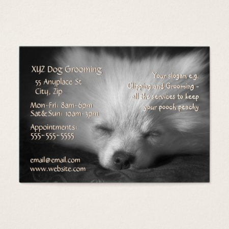 Dog Grooming Service business card template