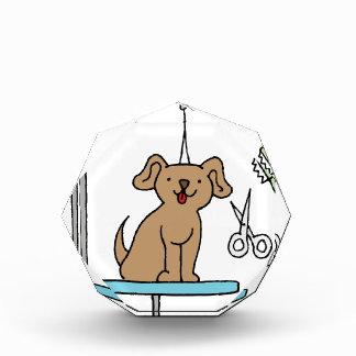Dog grooming table acrylic award