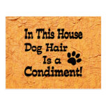Dog Hair Condiment Postcard