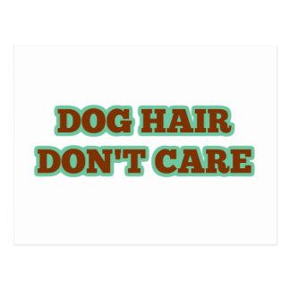 Dog Hair, Don't Care Postcard