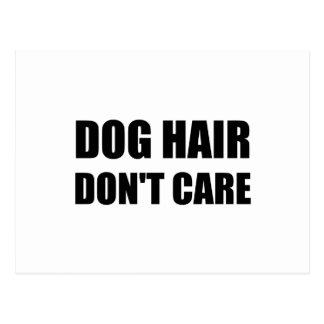 Dog Hair Dont Care Postcard