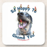Dog Happy Gnome You Beverage Coaster