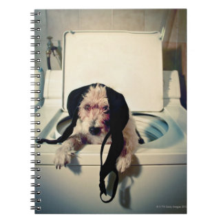 Dog helping out with the wash spiral notebook