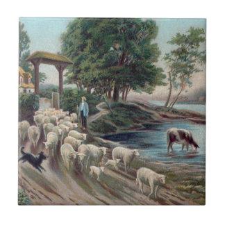 Dog Herding Sheep Down Path Ceramic Tiles