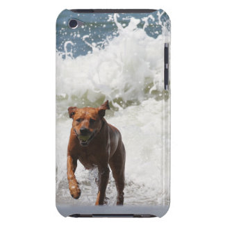 Dog - Here I Come.... iPod Touch Covers