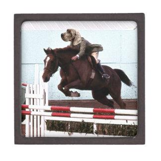 Dog Horse Jump Premium Trinket Boxes
