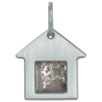 Dog House Dog tag/key chain by DAL Pet Name Tag