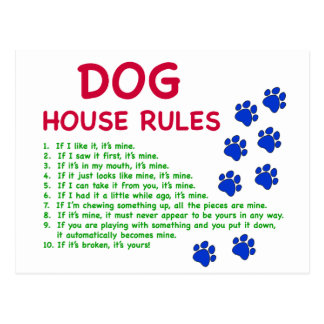 Dog house rules - rules to live by postcard