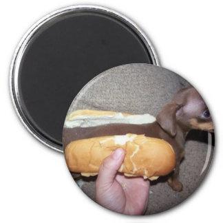 Dog in a Bun Magnets